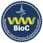 The Biomolecular spectroscopy & dynamics Cluster (BioC)